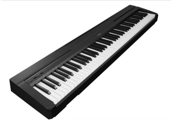 Digital Piano .png