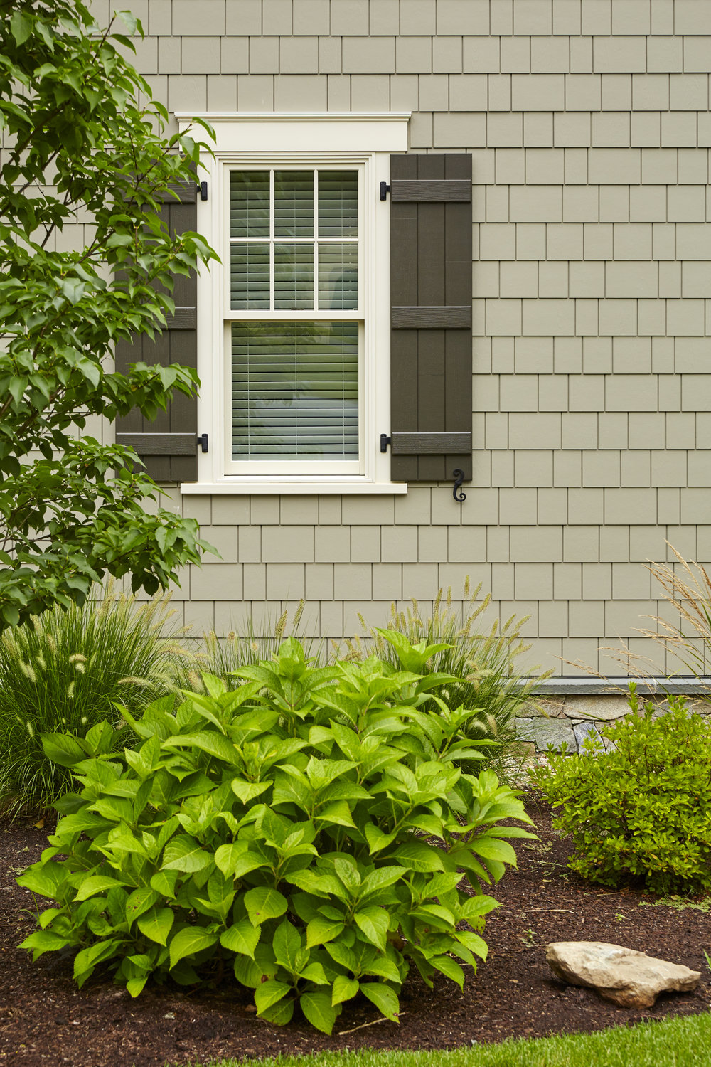 Siding & Windows -