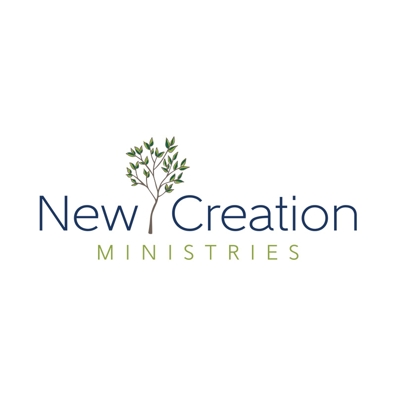NewCreation.jpg