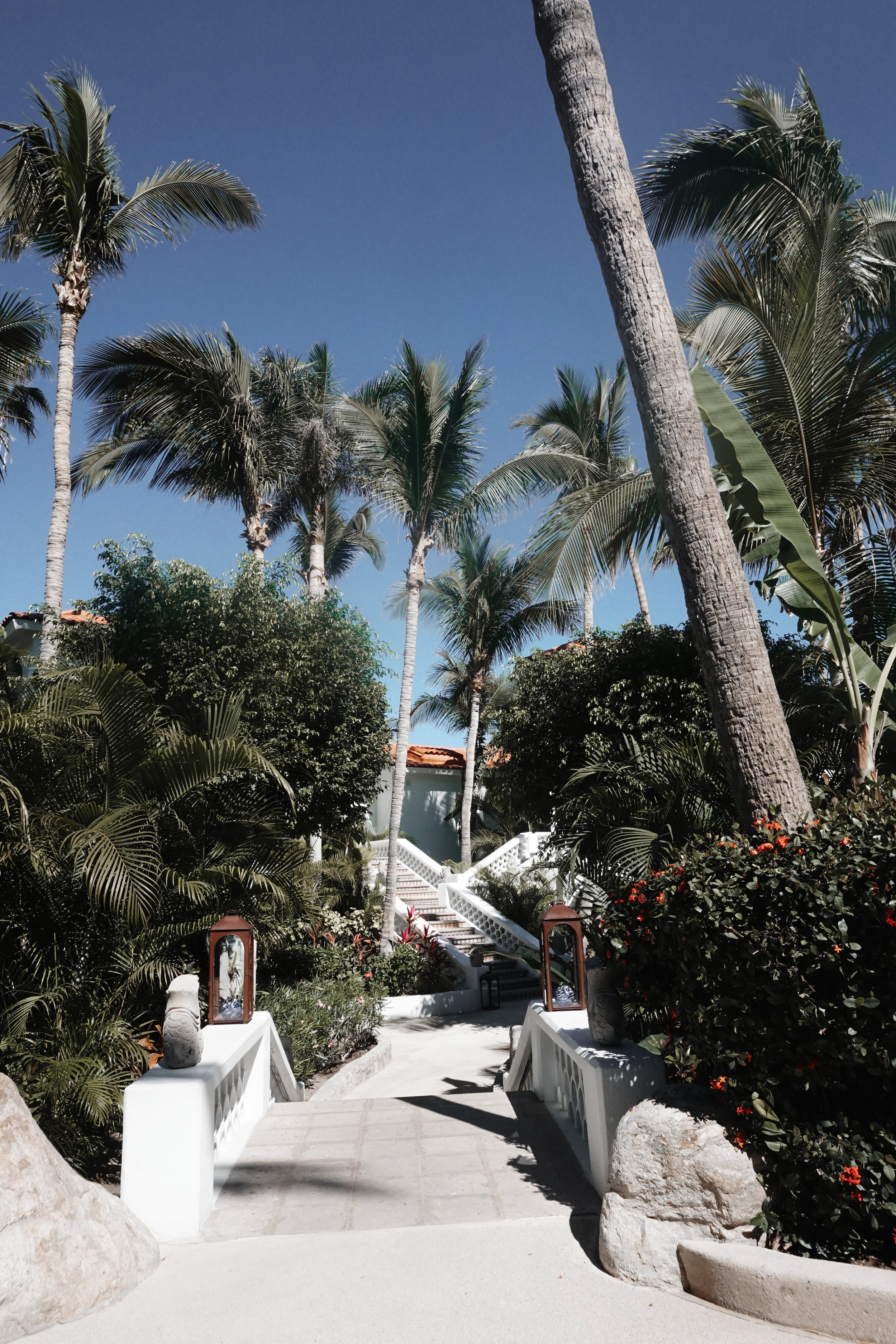 The One and Only Palmilla in Los Cabos by Julia Friedman