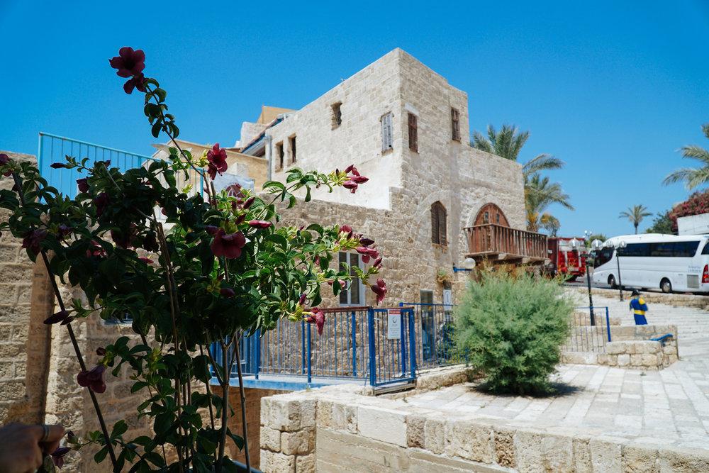 Scenes from the old city of Jaffa in Tel Aviv, Israel by Julia Friedman.