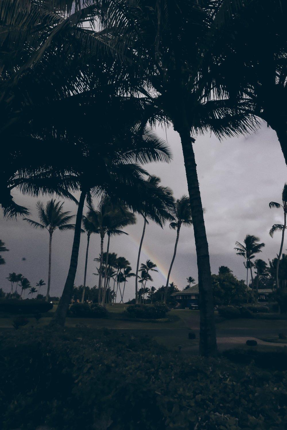 Rainbow in Kauai Kauai Travel Guide - Julia Friedman