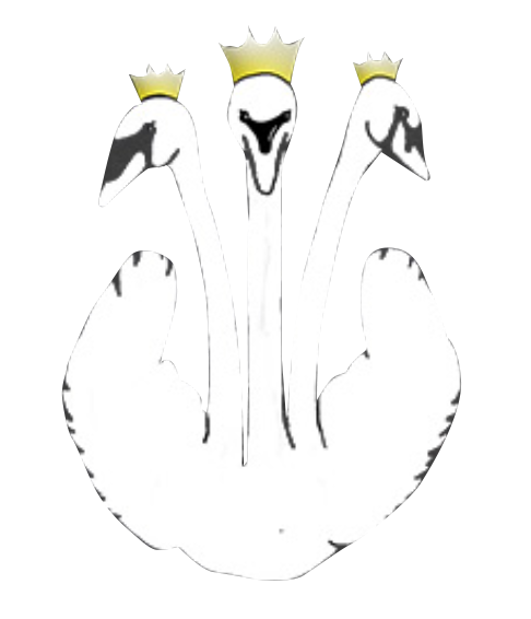 The Three Swans