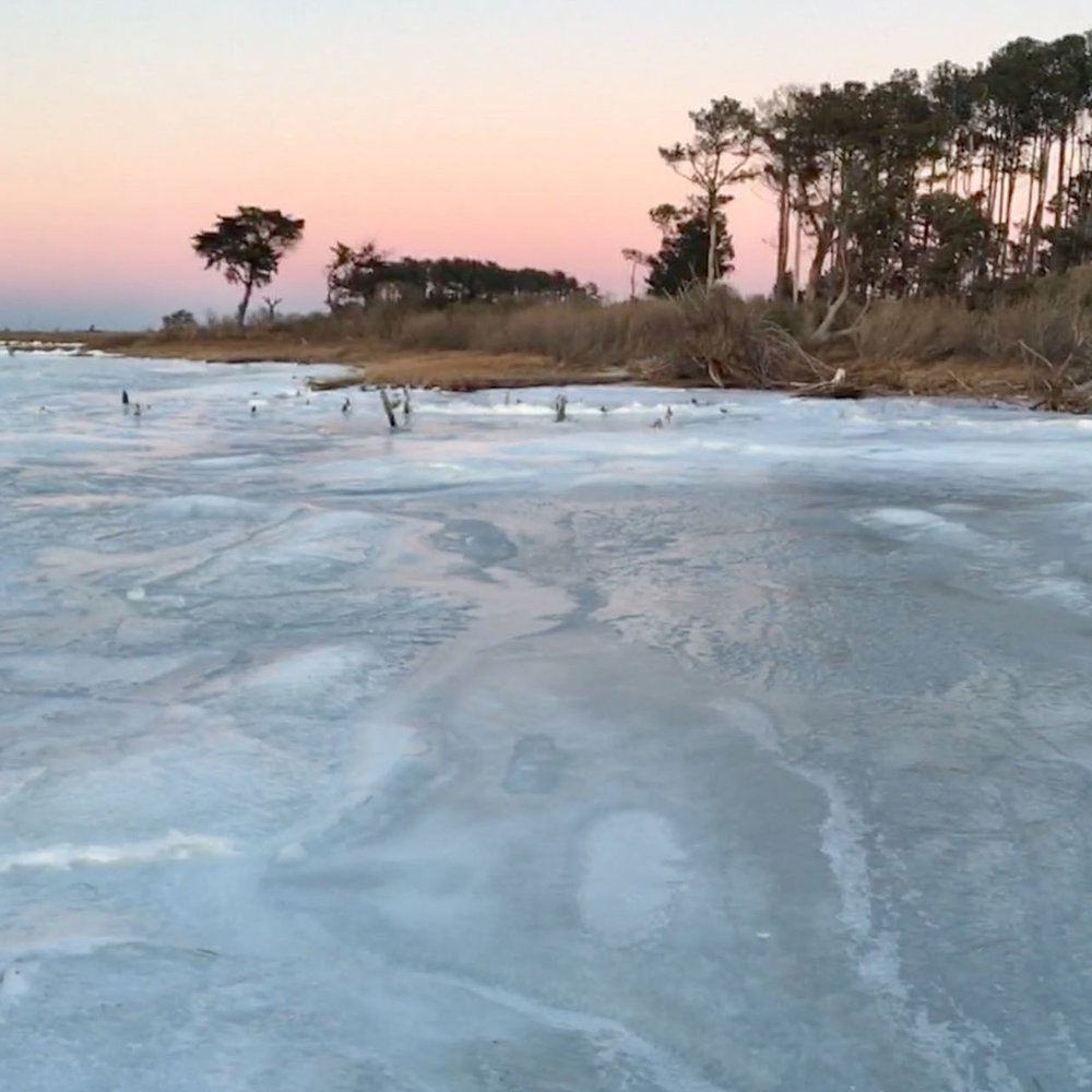 14,000 acres - The VES Land Trust has preserved 14,000 acres on the Eastern Shore.