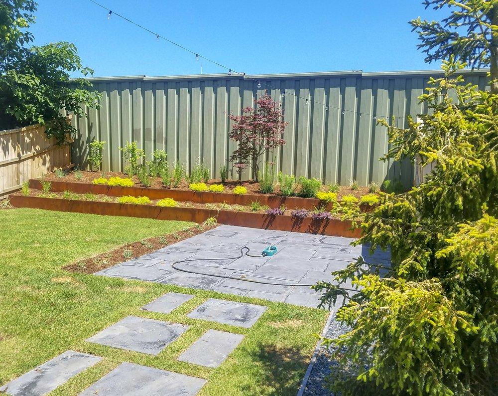 modern-backyard-grass.jpg