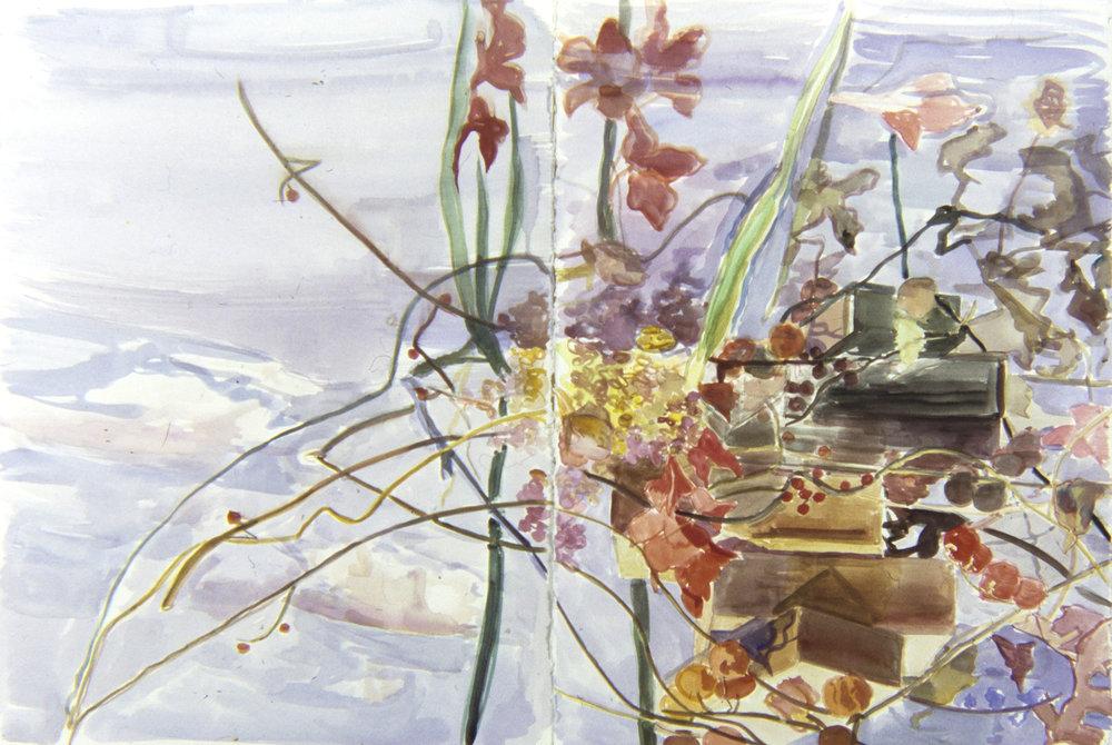 Reflection of Gladioli