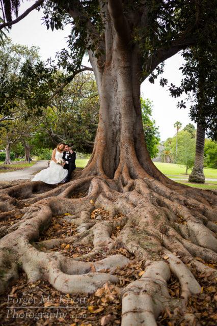 vince_gloria_wedding_5III4387