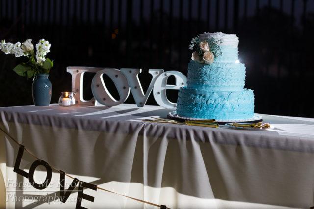 Joe_Vanessa_Wedding-156