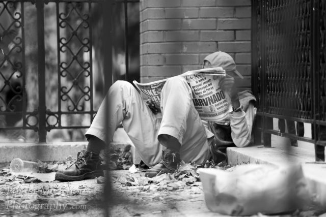 Light Reading, New York city manhatten queens brooklyn street man homeless reading park