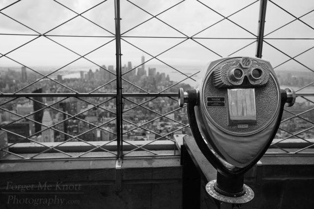 Empire View, New York city building top skyline