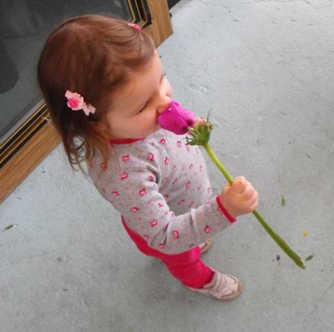 Violet smelling flower.jpg