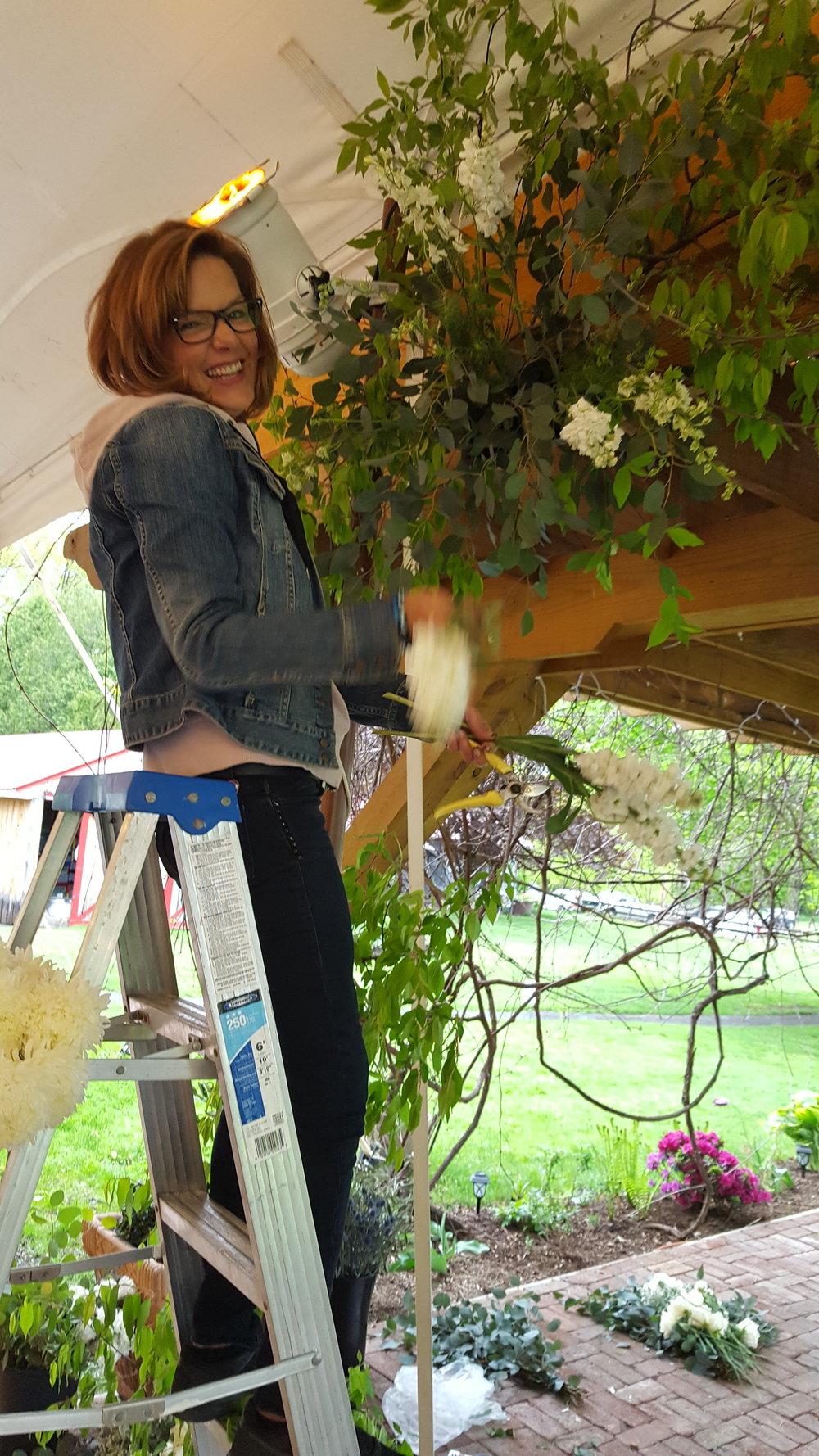 kate ladder.jpg