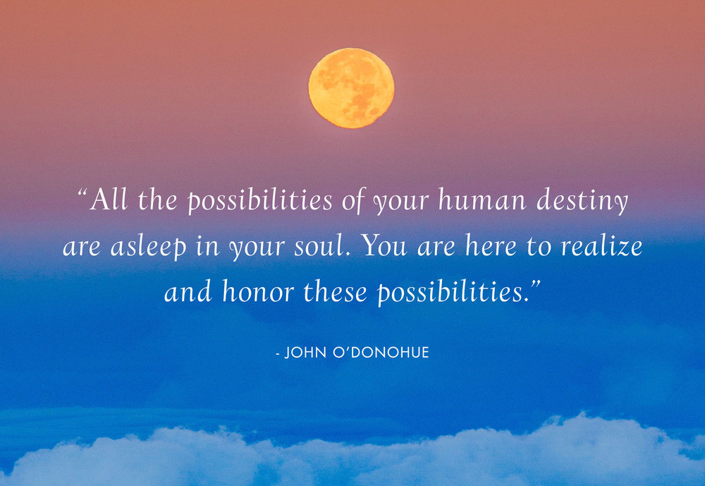 Contact-Lynne-Hutchinson-Stepping-Into-Possibility-Holistic-Life-and-Leadership-Coach-2019.jpg
