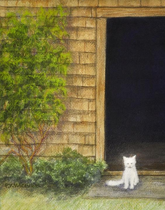 Backyard Kitty