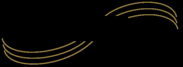 Dream Weaver Logo.png