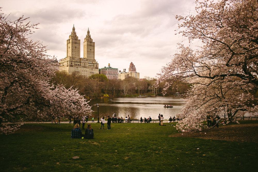 FOTOGRAFOS BODAS CANTABRIA SANTANDER PREBODA NUEVA YORK NY DAVID Y AMELIA-22.jpg