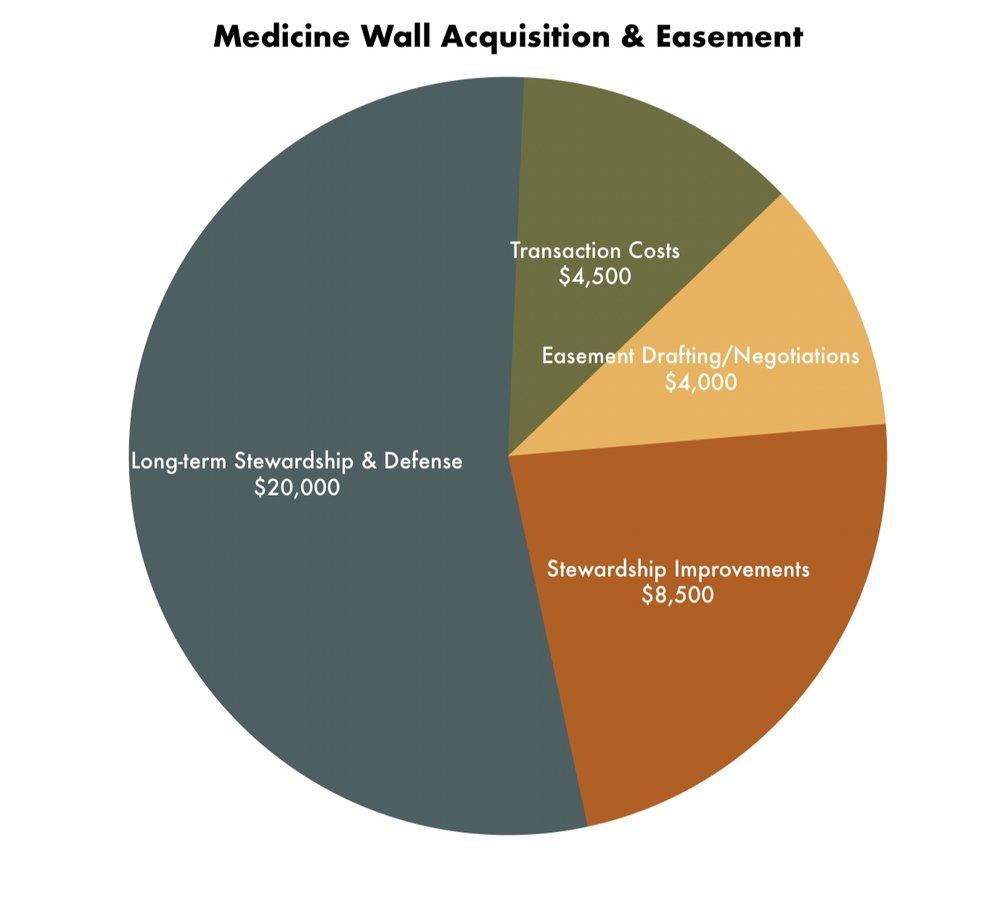 Med+Wall+Chart.jpg