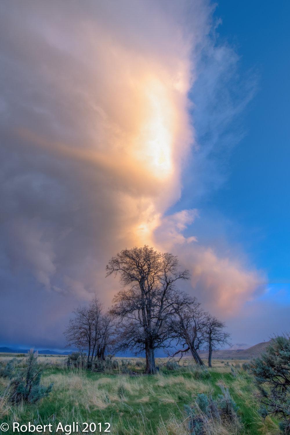 Alvord Desert Storm.jpg