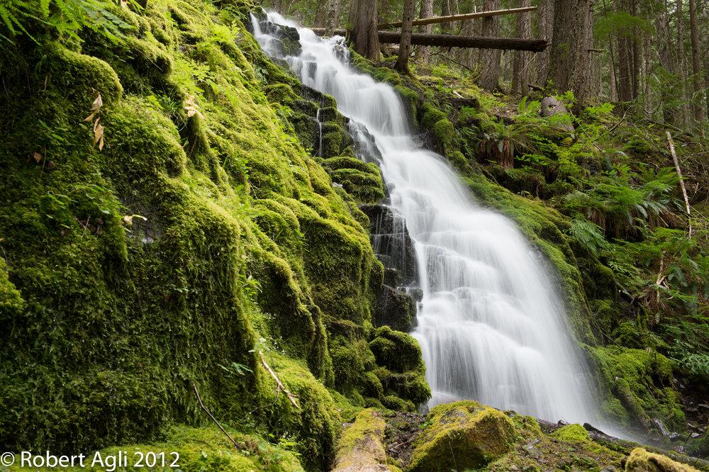 White Branch Falls.jpg