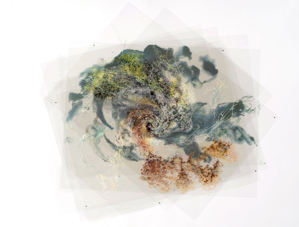 Aaliyah Gupta, Wind, Dispersion Series 4 , 2011.jpg