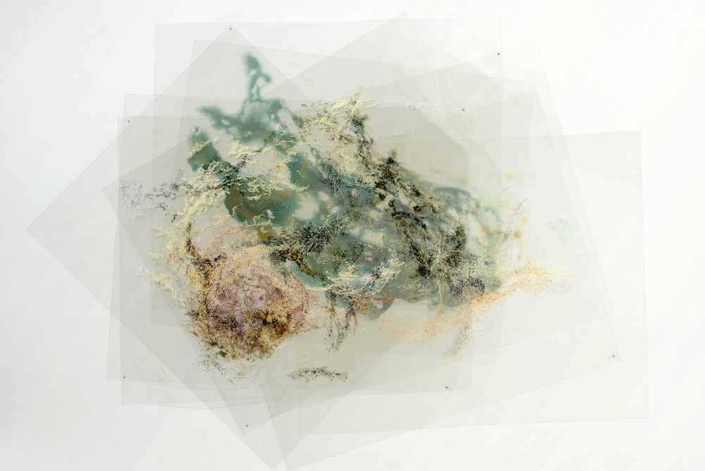 Aaliyah Gupta, , Dispersion Series 3 , 2011.jpg