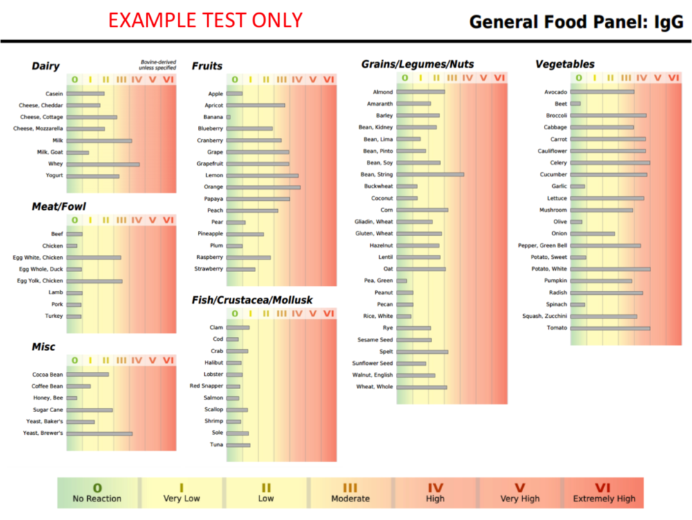 IgG Food Sensitivity Test Example