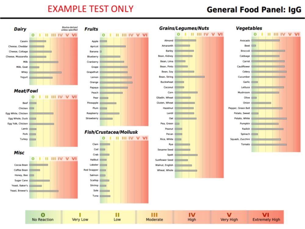 IgG Food Sensitivity Test Example