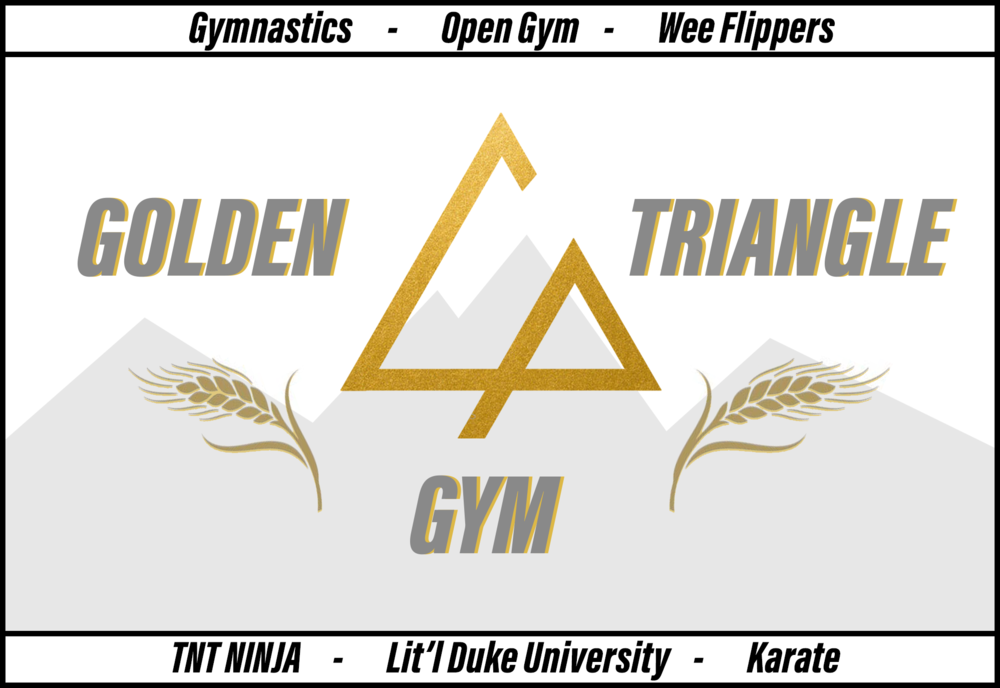 "Golden Triangle Gymnastics - Golden Triangle ""Shotokan"" Karate - Tough n Tumble Ninja Zone - Lit'l Duke University - Golden Rule Preschool"