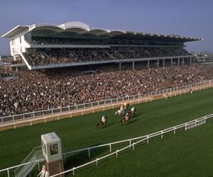 Cheltenham Racecourse - THE FESTIVAL