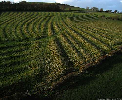 Ridge & Furrow