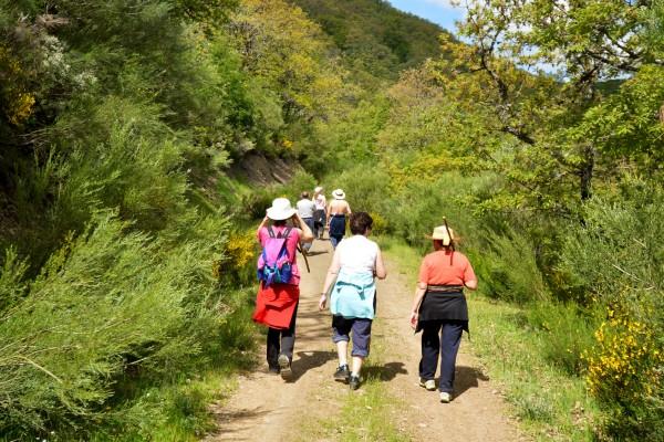 familia de excursion caminando por un camino en el monte