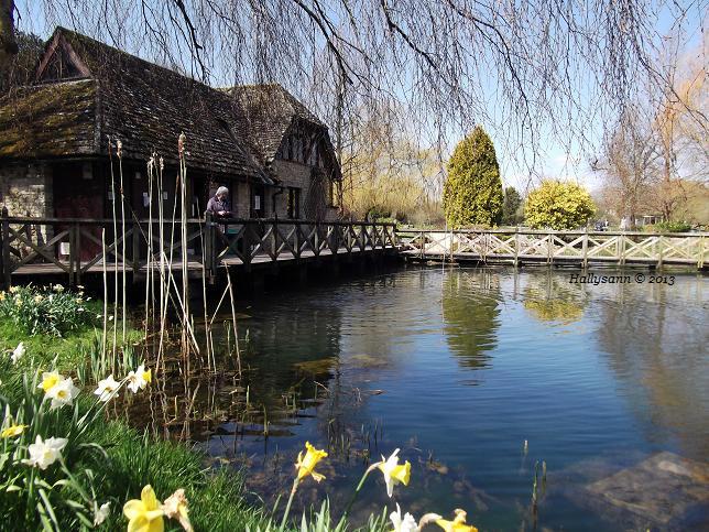 Bilbury-Trout-Farm