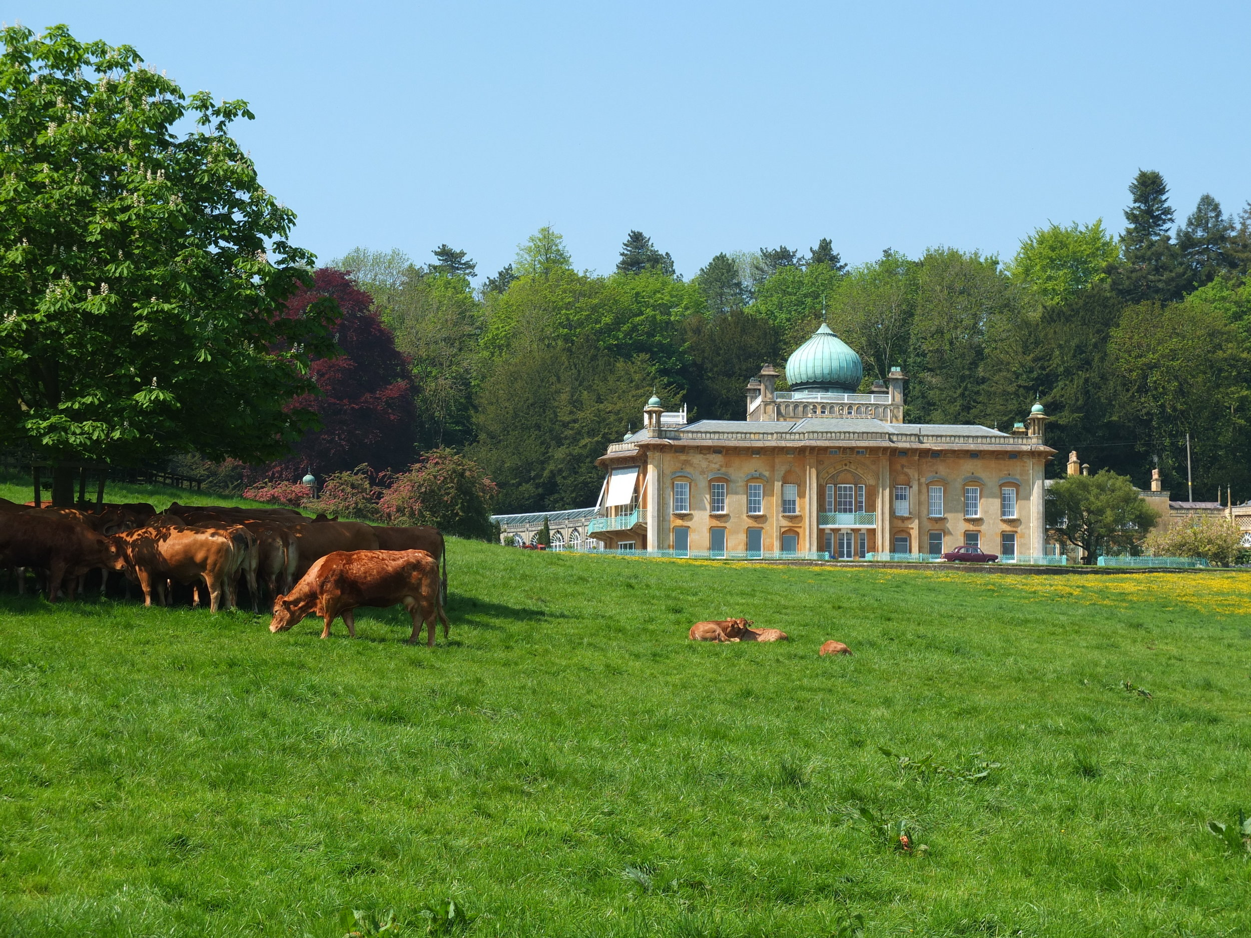 Sezincote House - Cotswold Guide