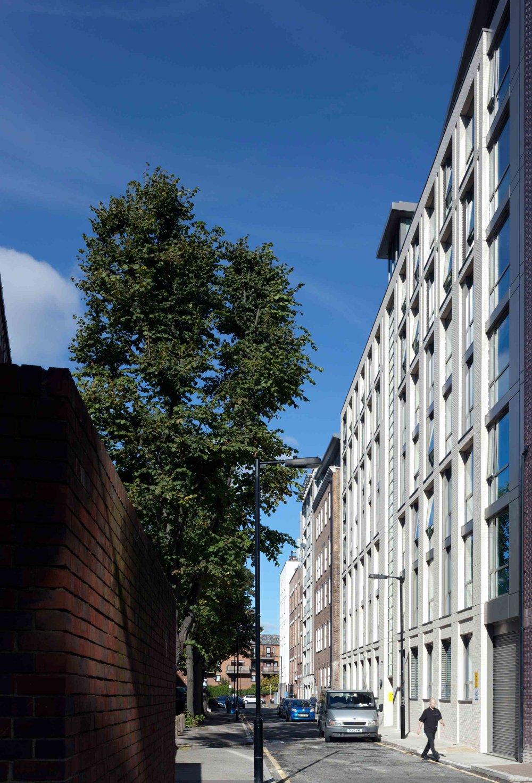 2403-HKR-PHOTO-PETERCOOK-Waterloo_Road (3).jpg