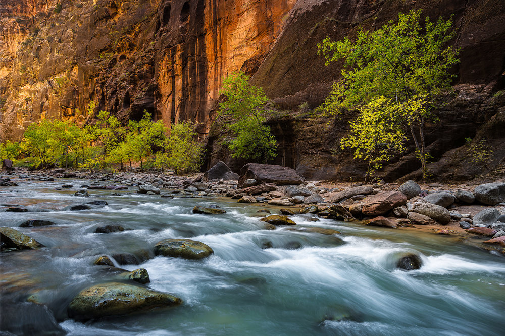 The narrows - Zion National Park, UT