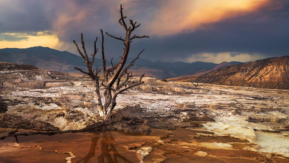 Mammoth Springs - Mammoth Yellowstone, WY