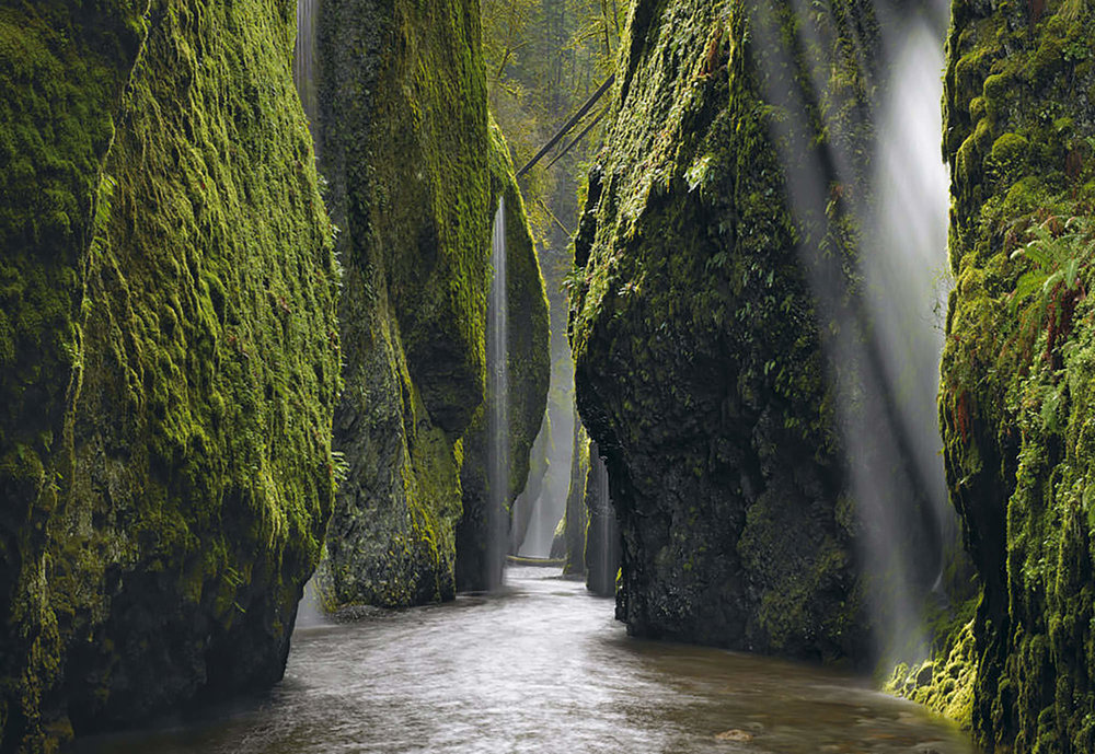 Oneonta Gorge - Columbia Gorge, OR