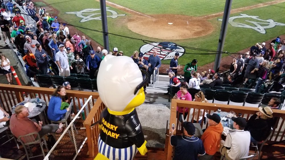 Harry Canary enjoying the view from the Northside Ford Party deck.