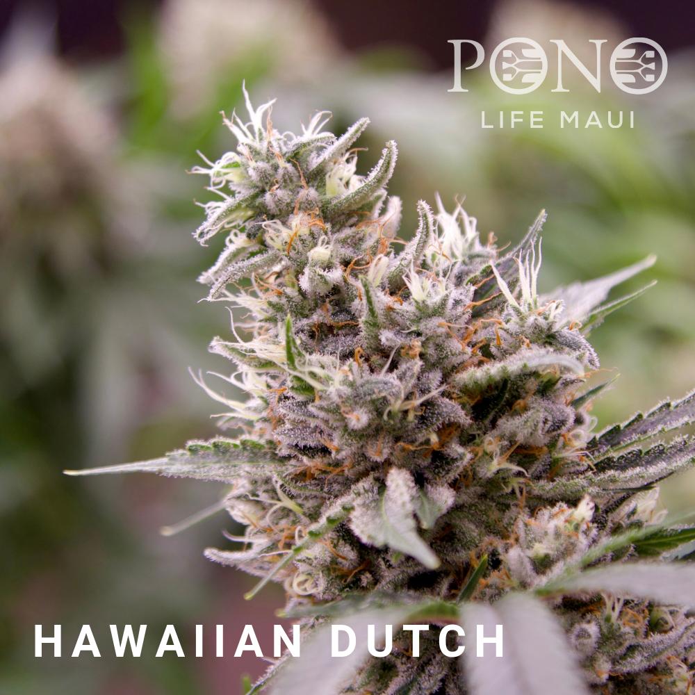 181215 Menu Hawaiian Dutch.png