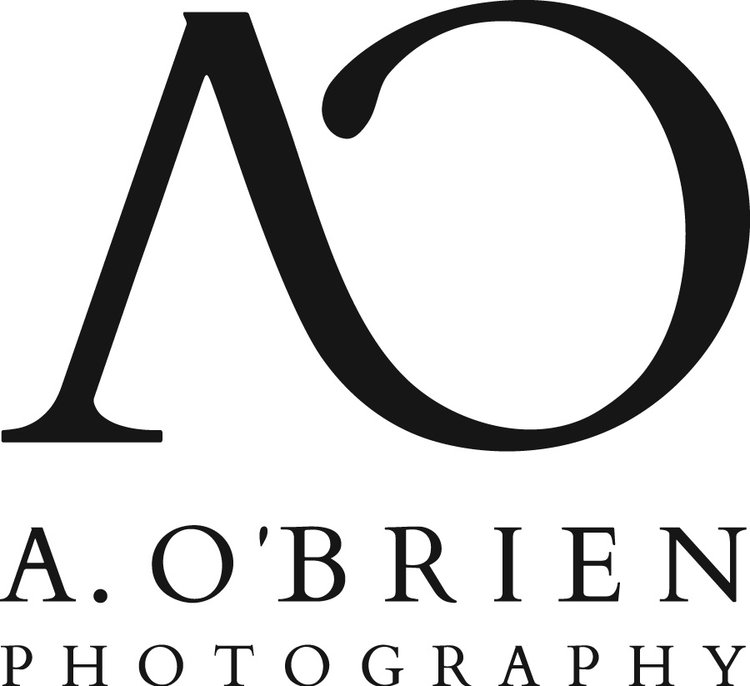 Chicago Based Wedding & Portrait Photographer