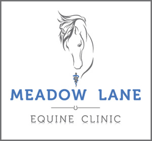 Meadow Lane Equine Clinic