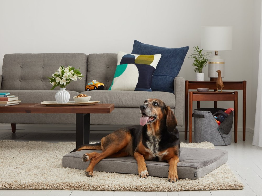 AMAZON_BEDS_LIFESTYLE_GRAY_BRITTA_0424_LARGE.jpg