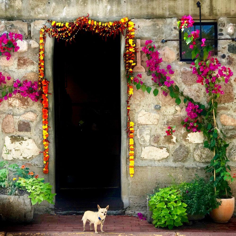 photos by Kerri Sherman kerrisherman.com