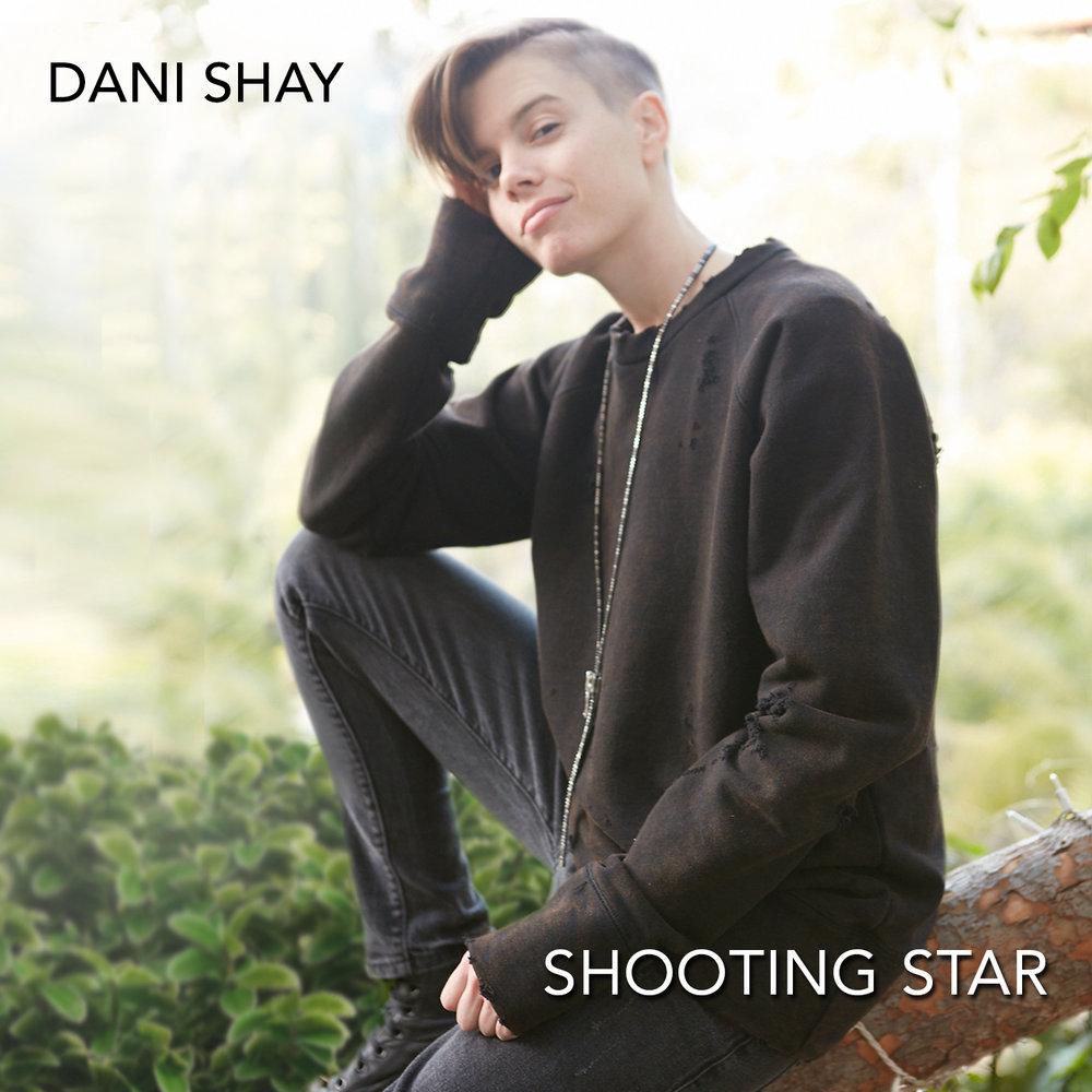 Dani CD cover.jpg