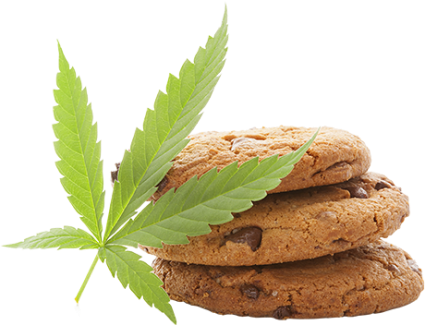 img_cookie[1].png