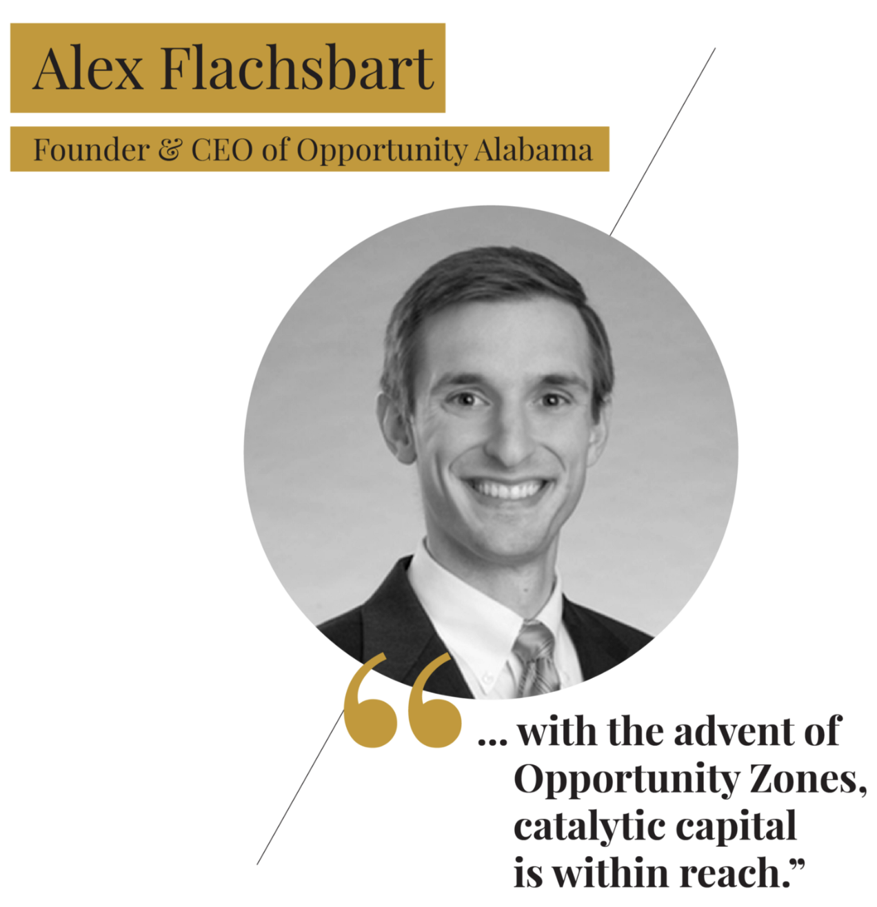 investors — New Blog — THE FORBES OZ 20