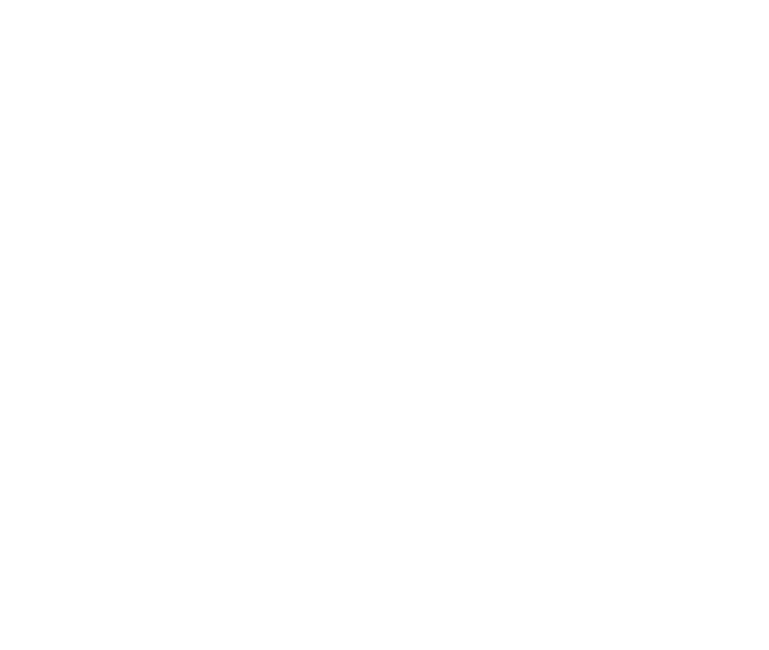 THE FORBES OZ 20