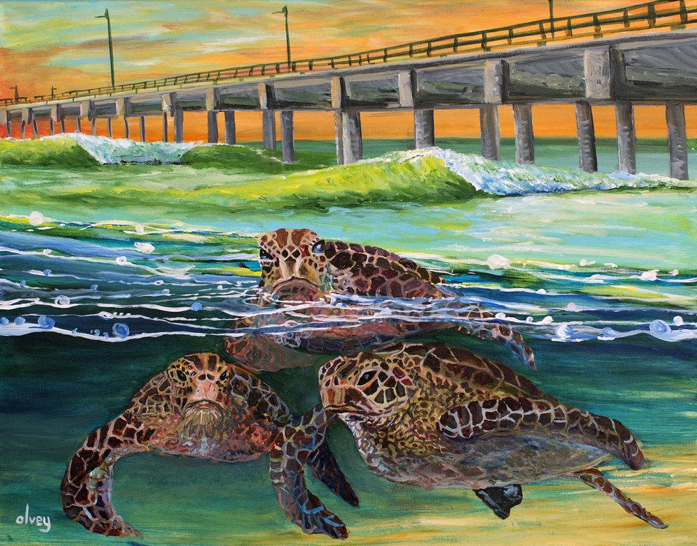 Turtle Patrol for WEB.jpg