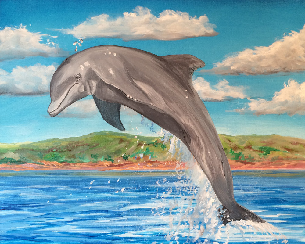 Jumping Dolphin for web.jpg