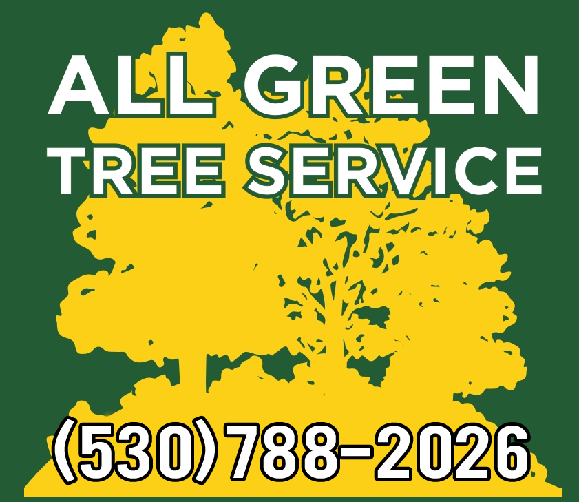 allgreentreeservice_logo.png